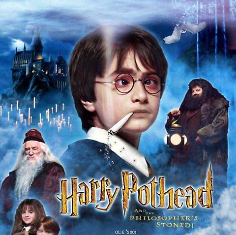 Harry S A Pothead And The Sorcerers Are Stoned